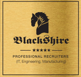 Technical Recruiter Vancouver